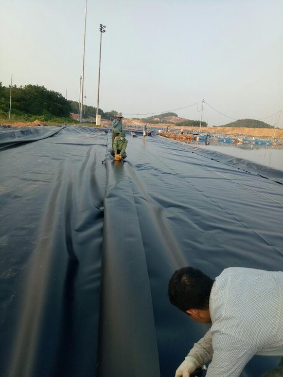 sản xuất cuộn nilon đen trải sàn
